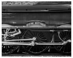Gresley's Graceful Lines