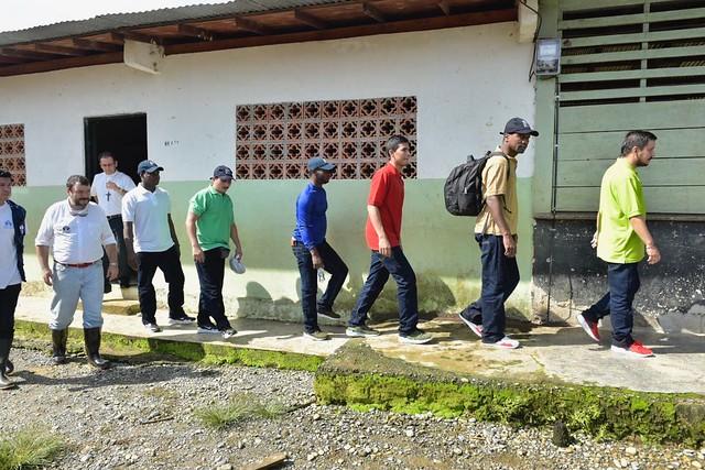 Liberación ciudadanos en poder del ELN en Chocó