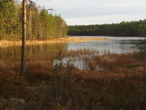 BR E12 Sjön4