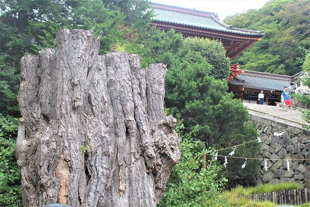 tsurugaoka021