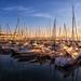 Morning at Lake Constance