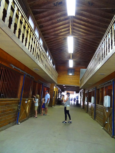 Stables 074 (1)