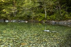 Santiam River in the Opal Creek Wilderness area, Oregon