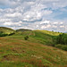The Shire Ditch on Herefordshire Beacon. The Malverns.