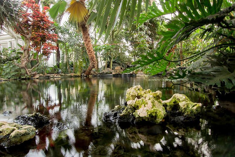Someren-Eind-Klein-Costa-Rica-9