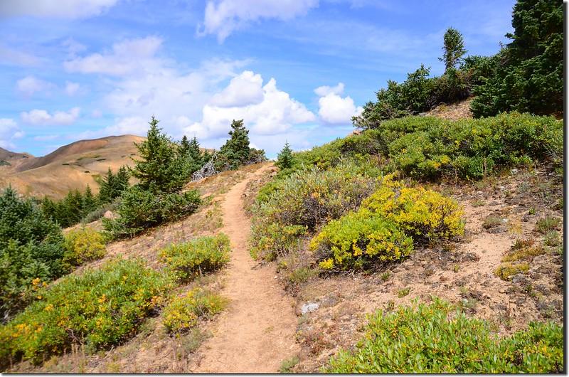 Continental Divide Trail (40)