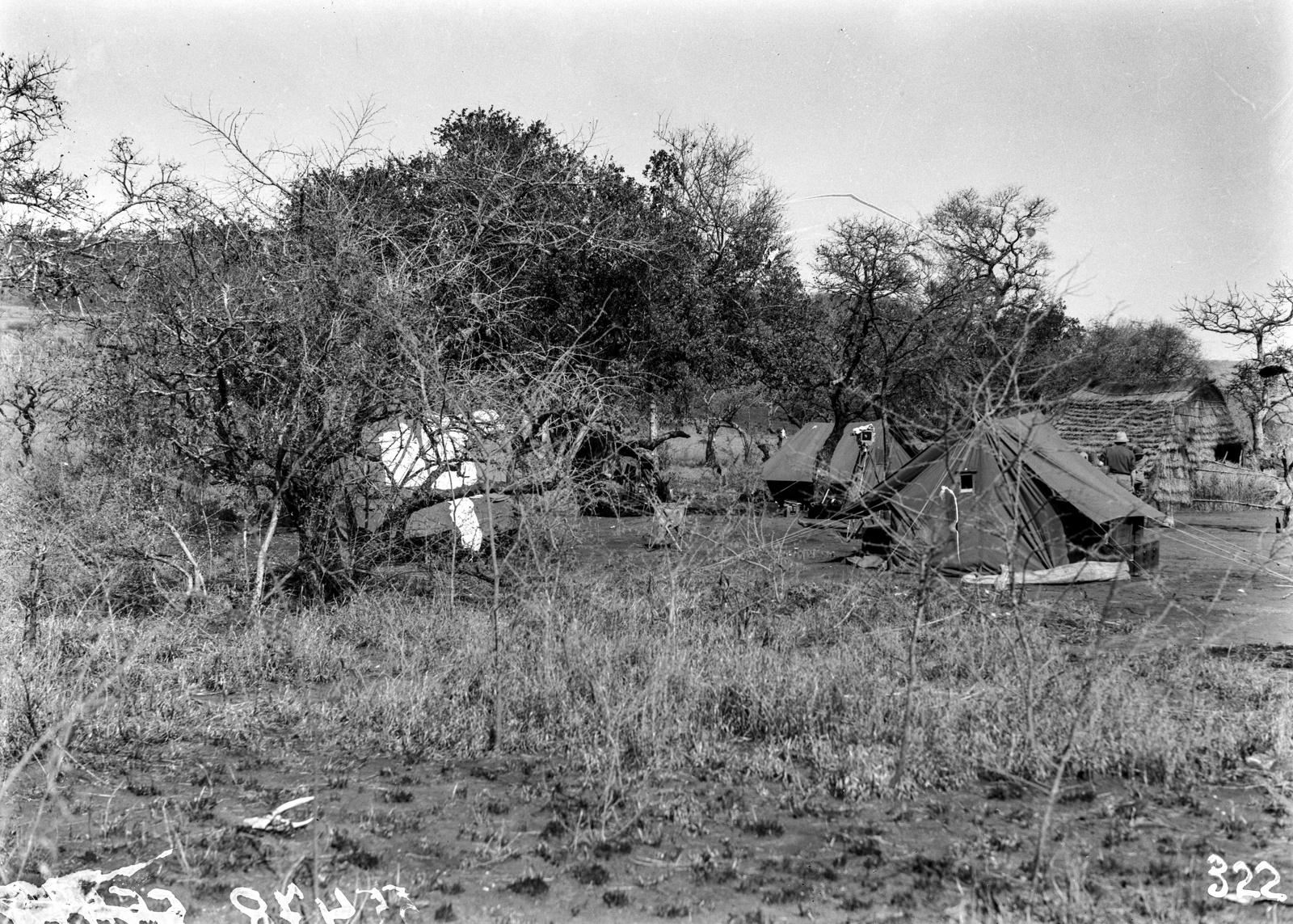 Южно-Африканский Союз. Квазулу-Наталь. Экспедиционный лагерь в поселении аборигенов