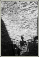 Croisement d'ombre