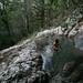 Natural pool by brjane27