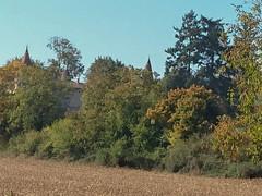 DSC_0203 - Photo of Lozanne