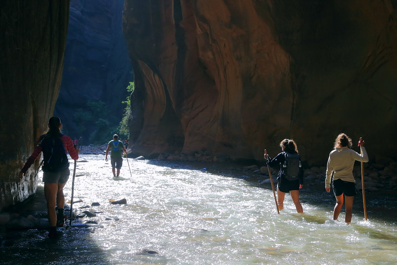 IMG_1848 The Narrows, Zion National Park