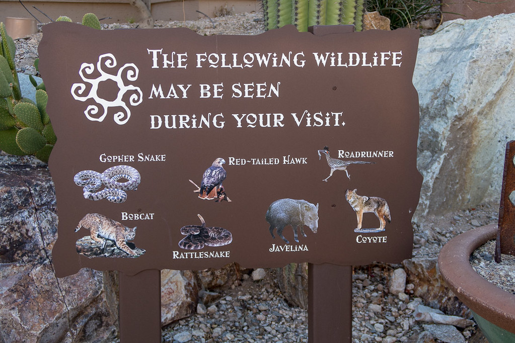 Wildlife warning signs at Hacienda del Sol