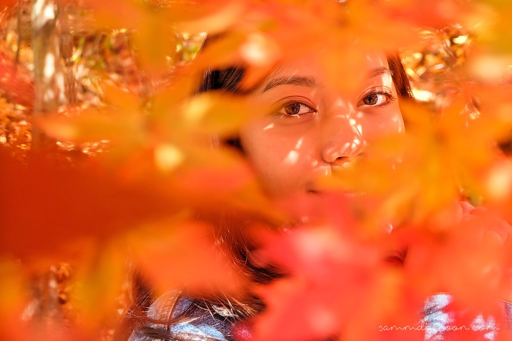 autumn_eyes_seoul_grand_park