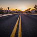 Sunset Road in Joshua Tree by pictcorrect