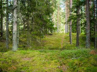 Tuiu, Saaremaa