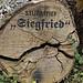 Gifhorn, Gedenken an den 05.07.2015 by bleibend