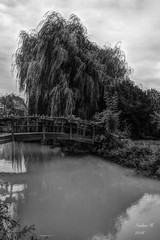 Petit pont - Photo of Gibourne
