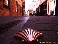 Mi camino de Santiago by L. Llobregat, © All Rights Reserved