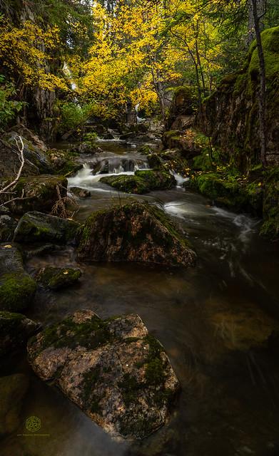 Twin Falls Stream - Pisew