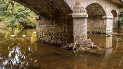 Pont sur le Leguer