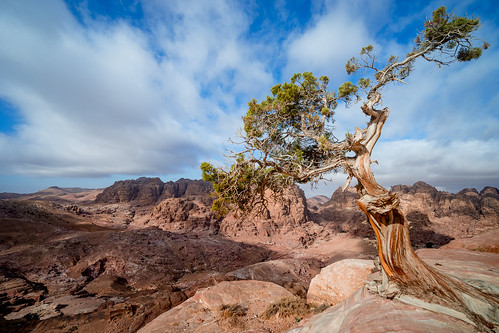 jordanien desert travelphotography travel historic historisches jordan königreich kingdom alurdunn road trip antik petra walifarashatrail wali