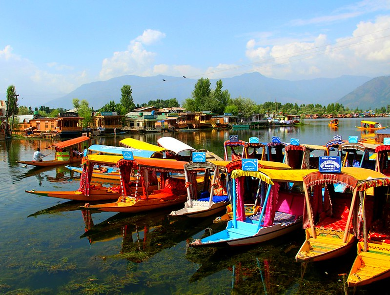 IMG_6127 kashmir dal lake shikara
