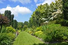 2018.06.20.072 CASTILLON - Les jardins, allée des fleurs
