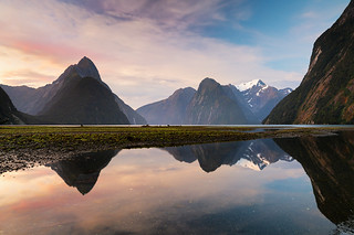 Sound Reflections - Milford Sound, New Zealand