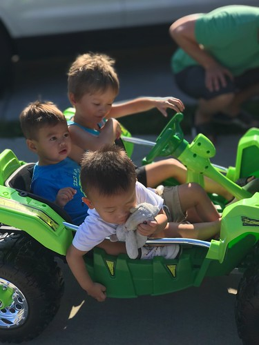 My three grandson's - Griffin, Lennox and Landon together in the new gift!!