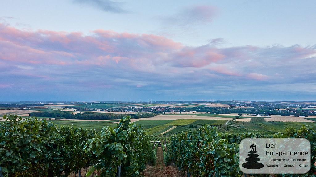 Weinprobe in den Weinbergen: Selzen und Hahnheim