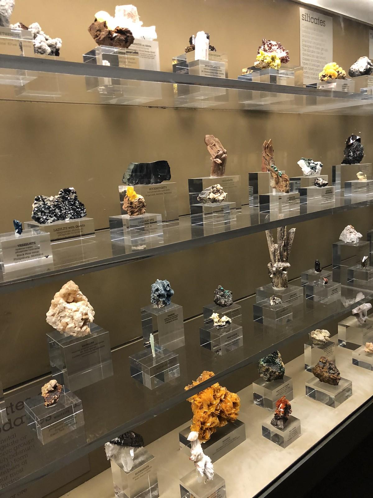 Natural History Museum of LA
