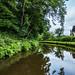 Llangollen Canal (nr. Chirk Bank)