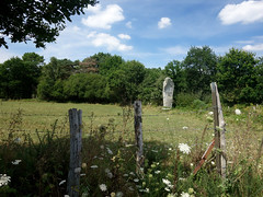 Le menhir dit « La Pierre Longue » près de Pluherlin - Morbihan - Août 2018 - 01