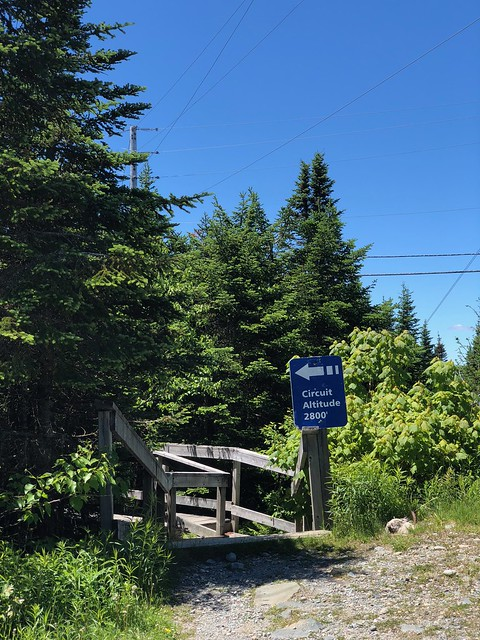 Mt. Orford - boardwalk trailhead