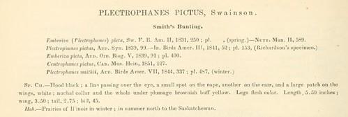 Baird et al. 1858 Smith longspur