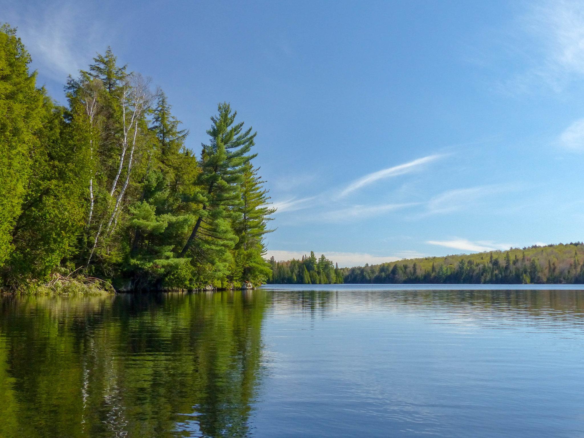 Algonquin Provincial Park (4)