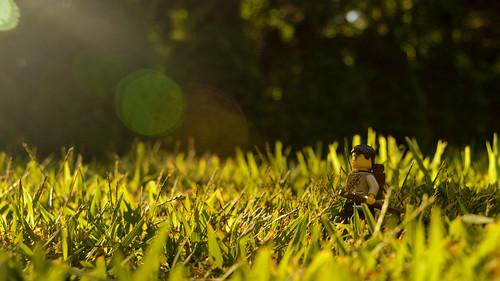 nikon d3200 adventurerjoe lego project365 minifigure grass sunset flare hike walking shadows