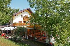 2018-08-19 Maising, Maisinger See, Starnberger See 020