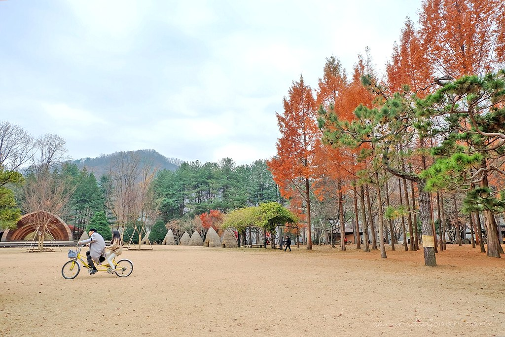 couple_autumn_nami_island