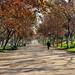 Parque Los Reyes 2, Santiago de Chile