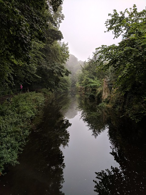 Misty Reflections on Water of Leith
