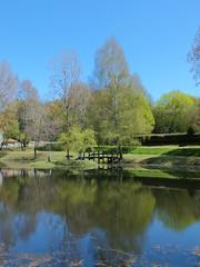 Gorses - Plan d'eau (bourg) - Photo of Lacam-d'Ourcet