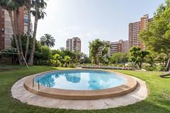 Urbanización provista de grandes zonas verdes y piscinas. Infórmese sin compromiso en su agencia inmobiliaria Asegil. www.inmobiliariabenidorm.com