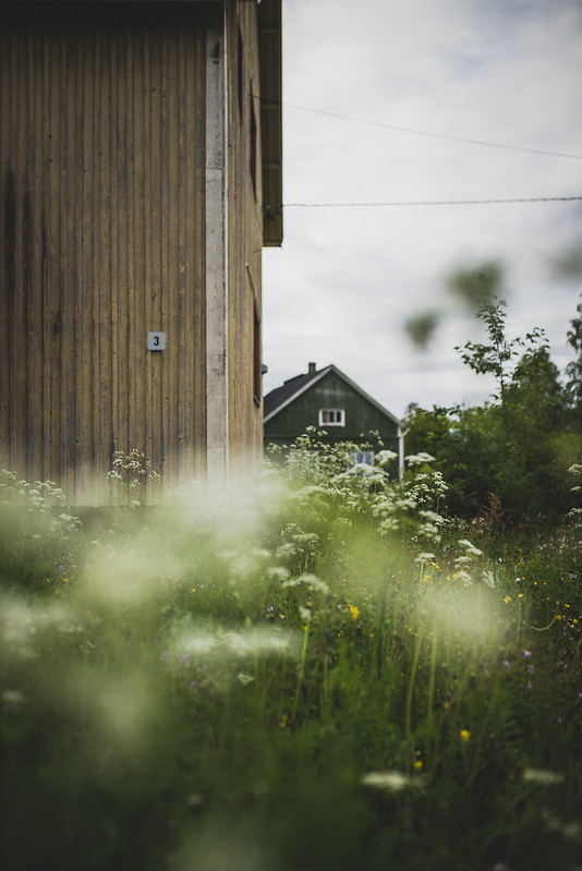 Forgotten Lapland