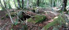 Le « Dolmen de Trébun » près de Pluherlin - Morbihan - Août 2018 - 03
