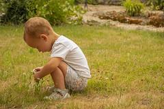 Examinando la naturaleza - Photo of Droizy