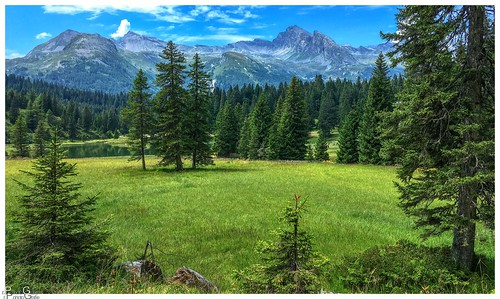 Wiesen, Wald und Berge/Meadows, forest and mountains
