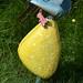 Garden Ornaments  DSC_0284