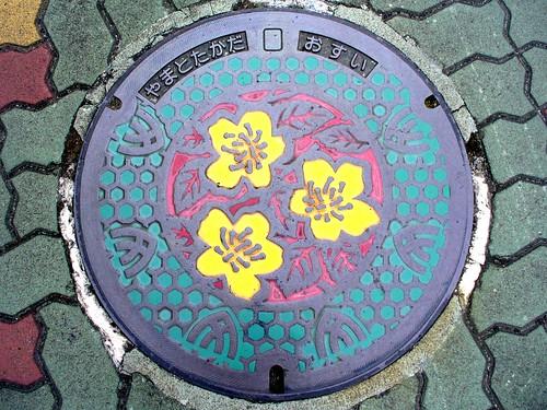 Yamatotakada Nara, manhole cover 2 (奈良県大和高田市のマンホール2)