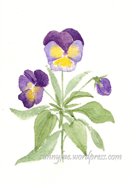 Postcard of watercolour pansies